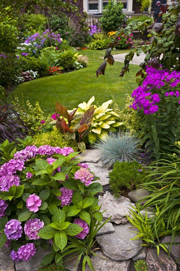 I COLORI DELL' ESTATE Riempiono i nostri giardini