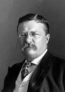 212px-President_Roosevelt_-_Pach_Bros